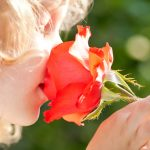shutterstock_94534756fillette_rose