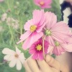 shutterstock_239418979womansmellingflower