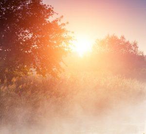 photo_fog_sunrise